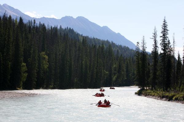 Alpine Rafting Kicking Horse River