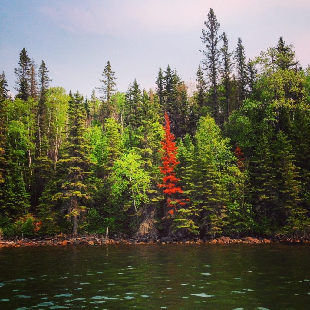 the beautiful colours of Clear Lake Manitoba
