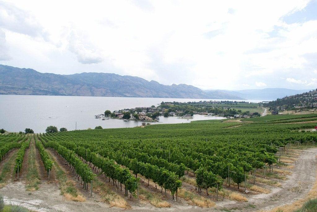 Winery Hopping Okanagan