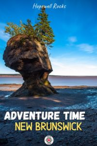hopewell rocks best things to do in new brunswick