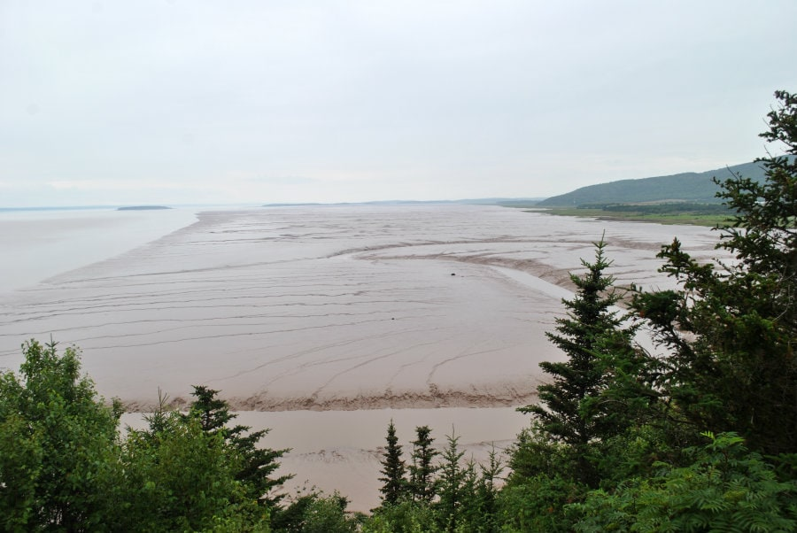 mud flats hopewell rocks new brunswick