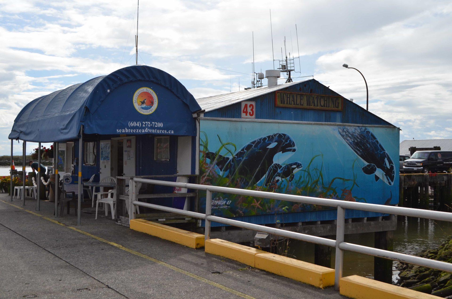 Tour para ver ballenas en Canadá