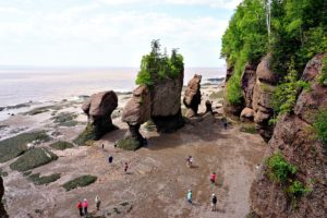 things to do in Hopewell Rocks