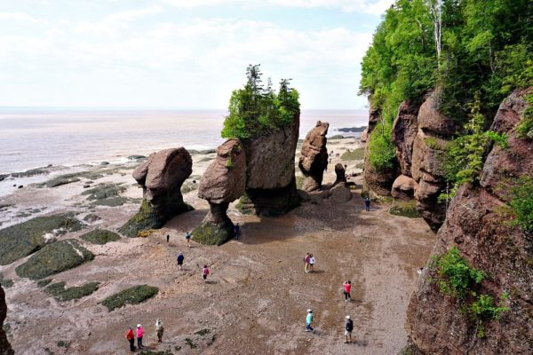 Things to Do in New Brunswick
