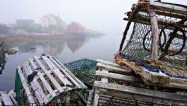 Things To Do in Nova Scotia