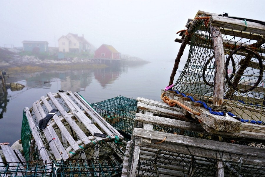 Lobster Traps Pettys Cove