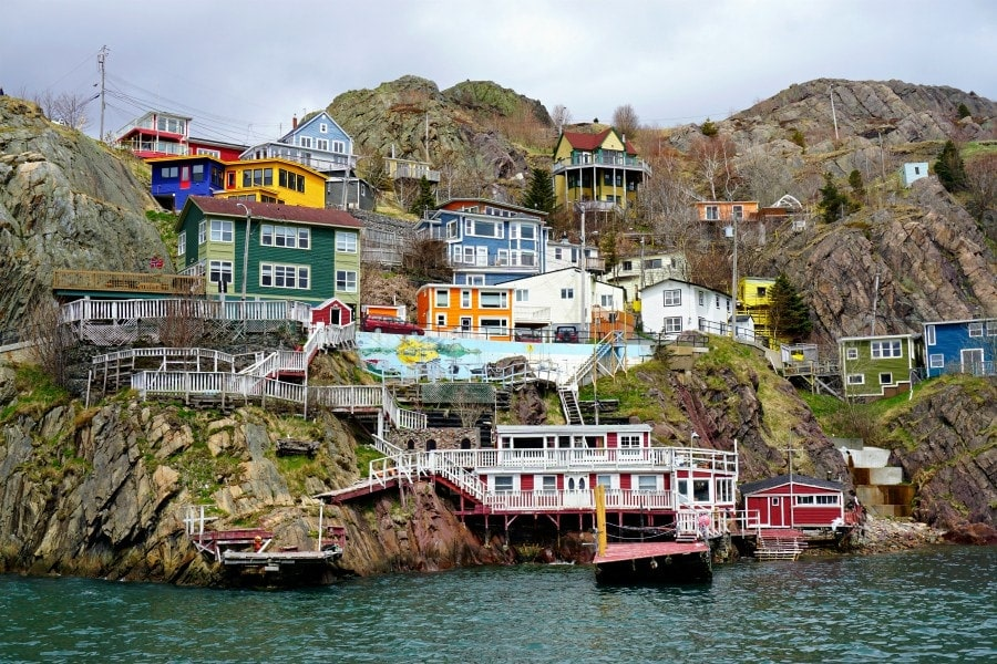 things to do in st johns nfld