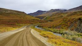 The Best Things To Do In The Yukon