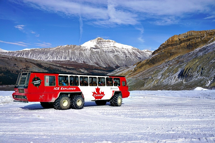 best things to do in jasper - Columbia Glacier