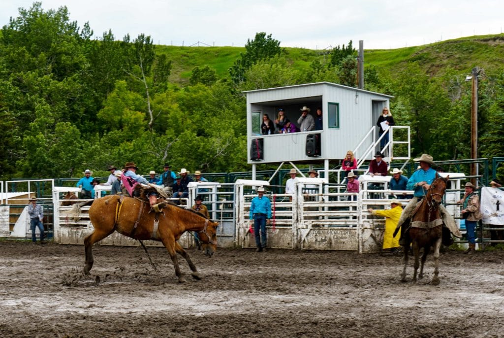 things to do in alberta rodeo