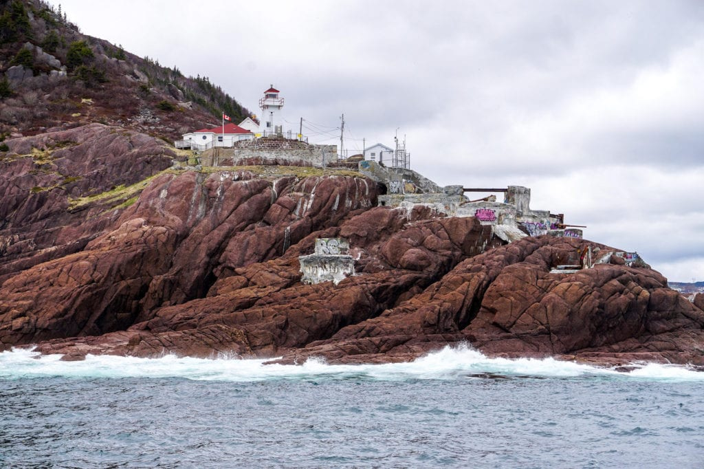 best things to do in st johns canada