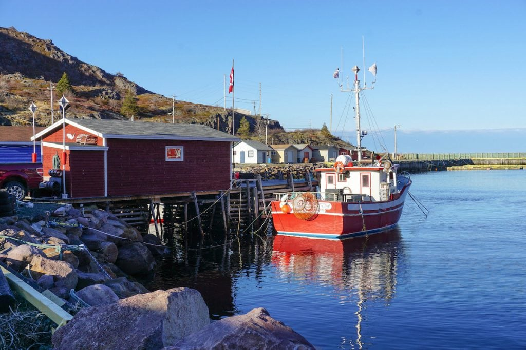 what to do in newfoundland canada