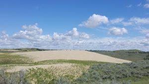 Saskatchewan sand dunes