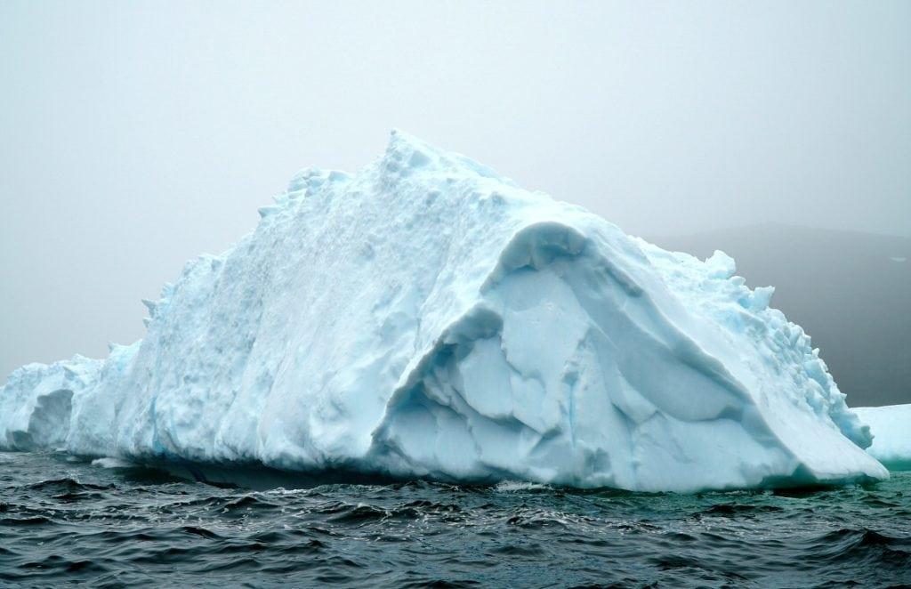newfoundland iceberg alley