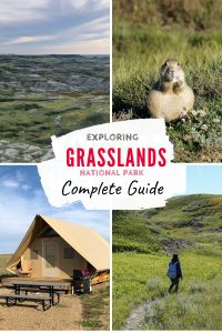 Exploring Grasslands National Park