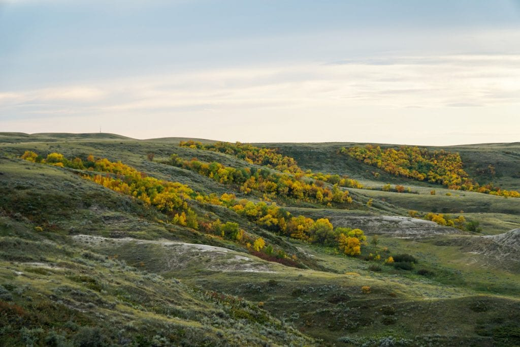 Fall in Grasslands National Park Badlands