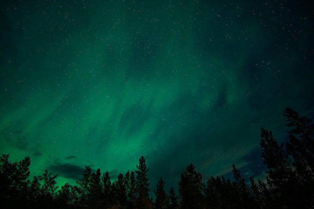 Yukon Northern Lights in Whitehorse