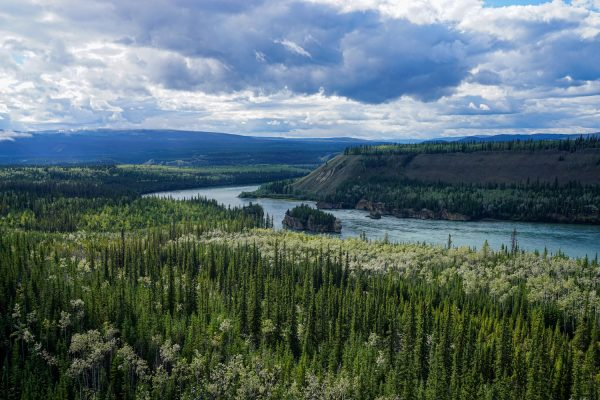Things to Do in the Yukon