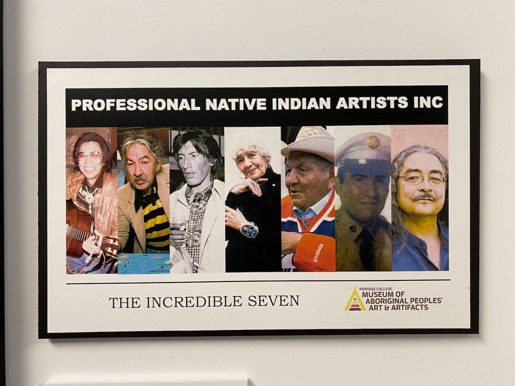the incredible seven indigenous artists