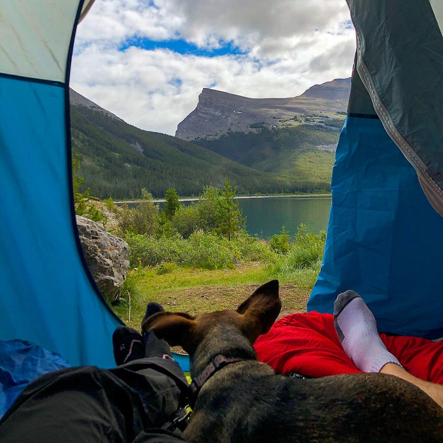 Camping with dogs at Spray Lakes West Campground.