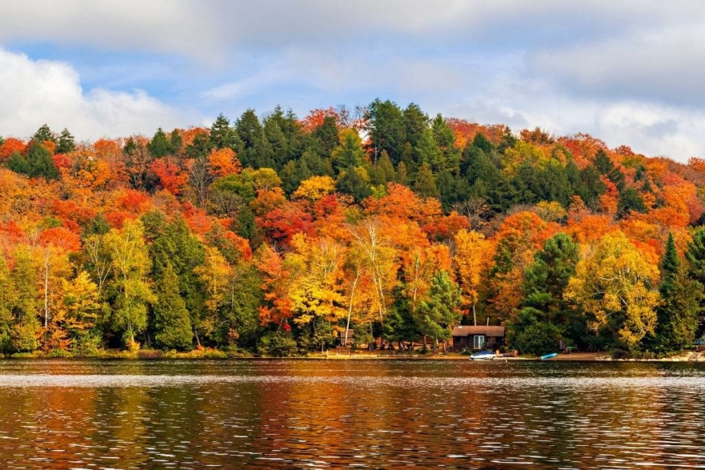 Algonquin provincial park is a popular spot for camping in Ontario.