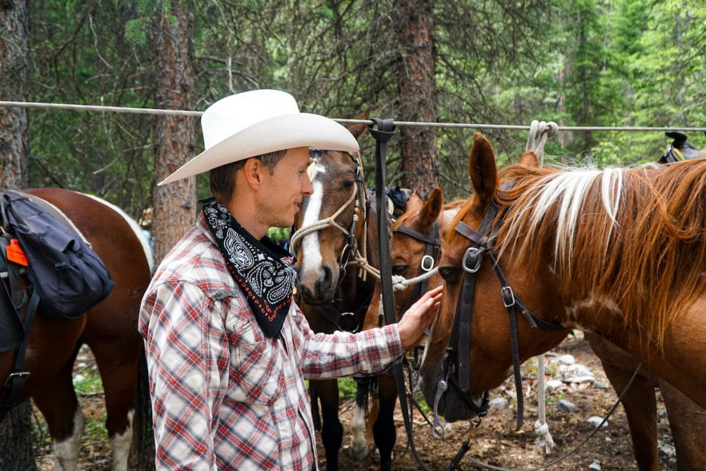 Banff horseback rides are a great way to get up close and personal with these majestic animals.