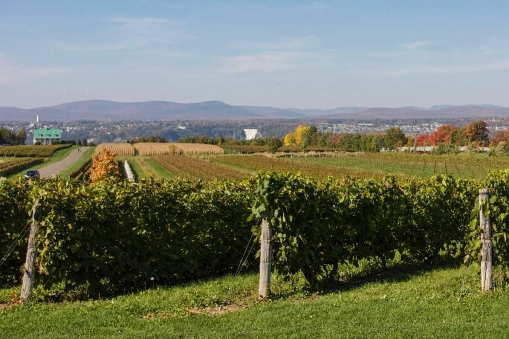 Quebec road trips for people who love wine.