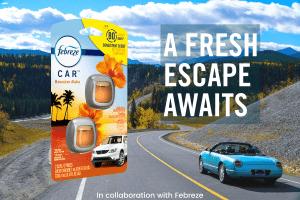 33 Road Trip Essentials