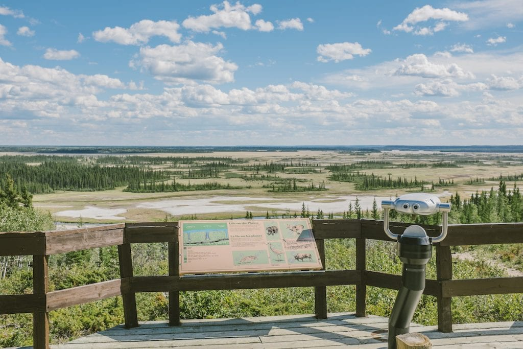 Wood Buffalo National Park is the largest in Canada.
